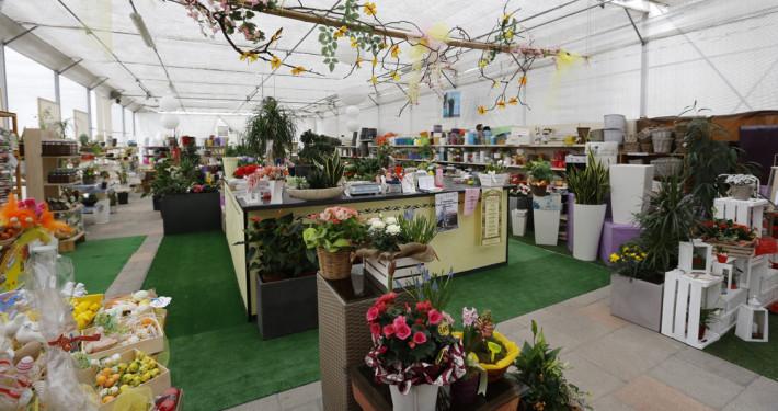 garden-shop
